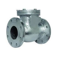 Alloy 20 Swing Check Valve