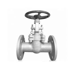 ASTM A351 CF8M Forged Globe Valves