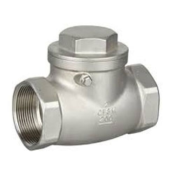 Stainless Steel 316 Ball Check Valve
